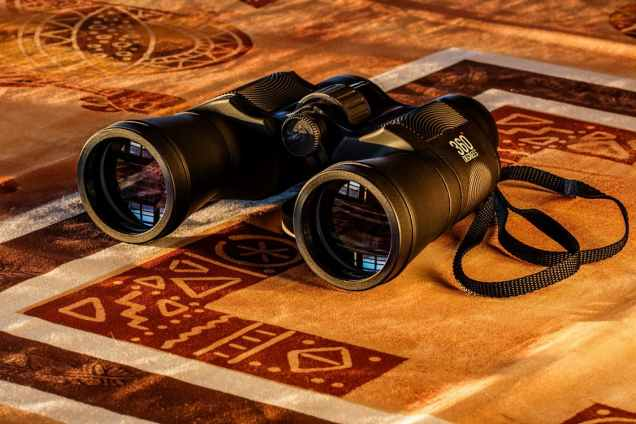 binoculars-birdwatching-spy-glass-spying-51945